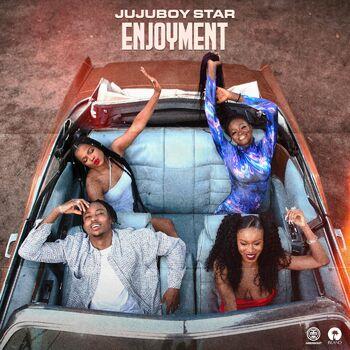 Enjoyment cover
