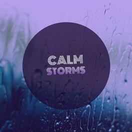 Album cover of # 1 Album: Calm Storms