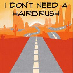 I Don't Need a Hairbrush