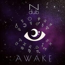 Ndub - Awake
