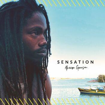 Sensation cover