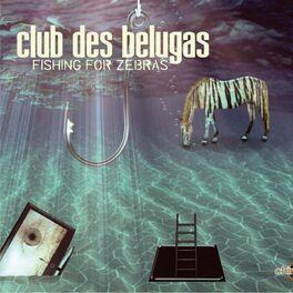 Album cover of Fishing for Zebras