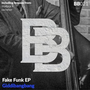 Fake Funk cover