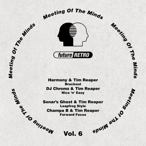 Download VA - Meeting Of The Minds Vol. 6 mp3