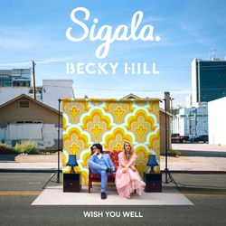 Wish You Well (feat. Becky Hill) - Sigala Download