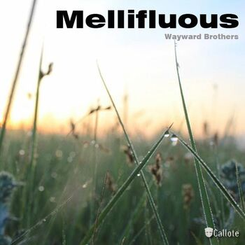 Mellifluous (Original Mix) cover