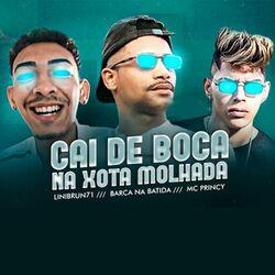 Mc Princy, Barca Na Batida, Lilbrun71 – Cai de Boca na Xota Molhada 2020 CD Completo
