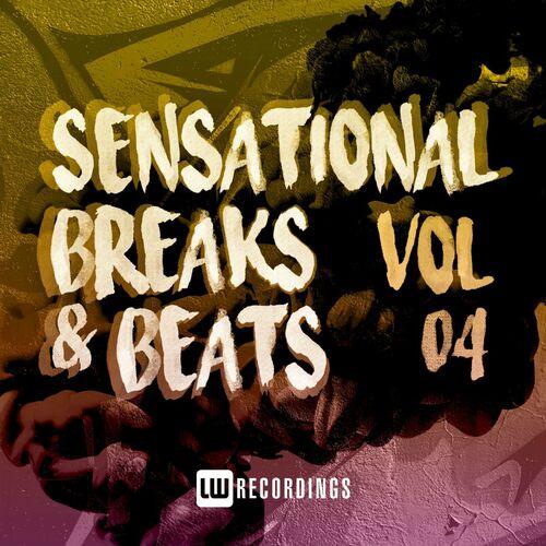 Download VA - Sensational Breaks & Beats, Vol. 04 (LWSBNB04) mp3