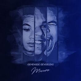 Album cover of Gemengde Gevoelens