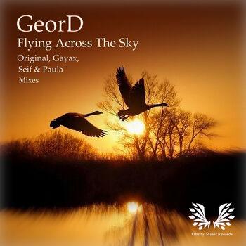 Flying Across The Sky cover