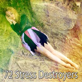 Album cover of 72 Stress Destroyers