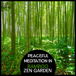 Various Artists Peaceful Meditation In Bamboo Zen Garden Traditional Japanese Flute Music Oriental Kyoto Buddha Space For Yoga Relaxation Lyrics And Songs Deezer