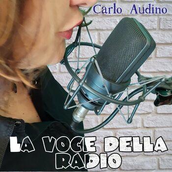 La voce della radio cover