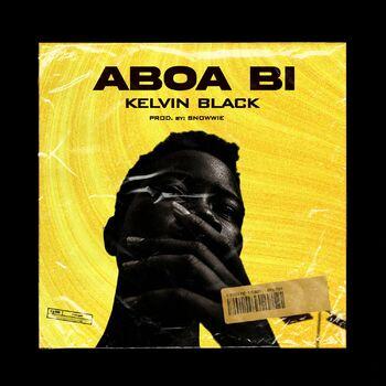 Aboa Bi cover