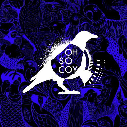 VA – Flavouritism Vol. 7 [Oh So Coy Recordings]