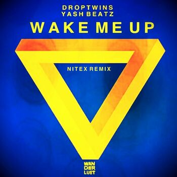 Wake Me Up cover