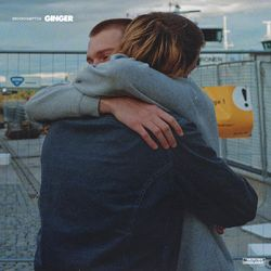 BROCKHAMPTON – GINGER 2019 CD Completo