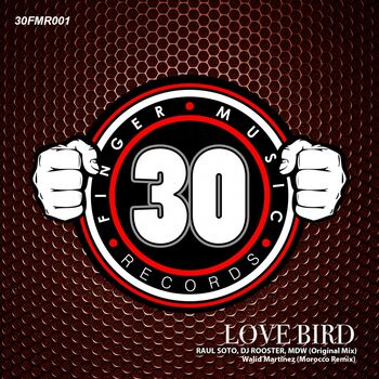 Love Bird cover