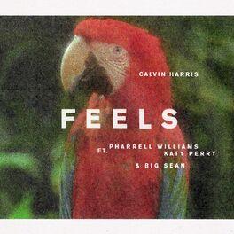 Album cover of Feels