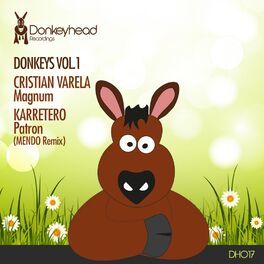 Album cover of Donkeys, Vol. 1