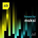 House by Moksi