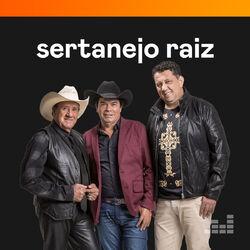 Sertanejo Raiz 2021 CD Completo