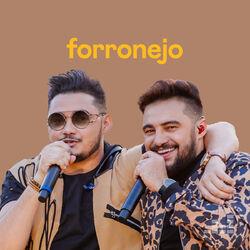 Download Forronejo 2021