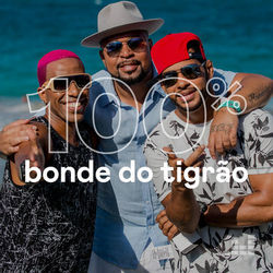 100% Bonde do Tigrão 2020 CD Completo