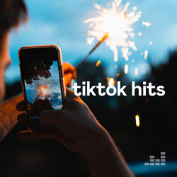 TikTok Hits 2020 CD Completo