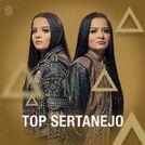 Top Sertanejo 2018