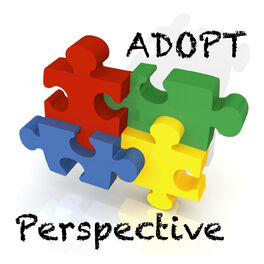 Show cover of Adopt Perspective