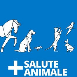 Show cover of Salute Animale