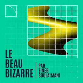 Show cover of Le Beau Bizarre par Zineb Soulaimani