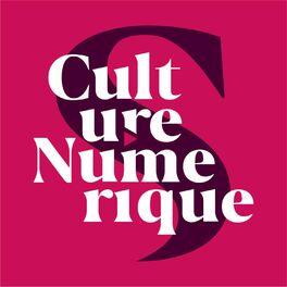 Show cover of Culture Numérique