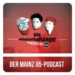 Show cover of Hinterhofsänger-Talk