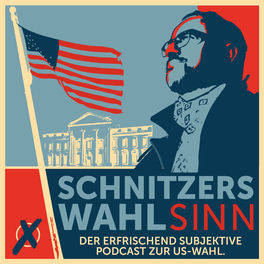 Show cover of Schnitzers WahLsinn