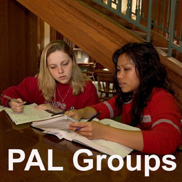 Show cover of Peer Assisted Learning (PAL) Groups Podcast: College Group Tutoring and Study Review Groups