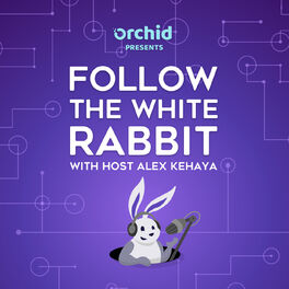 Show cover of Follow the White Rabbit