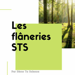 Show cover of Les flâneries STS