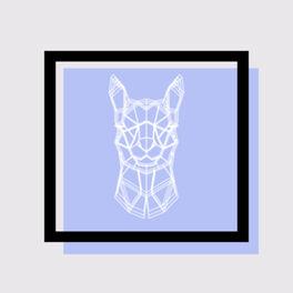Show cover of Alpaca