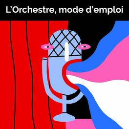 Episode cover of 34. Il Signor Bruschino (ouverture), de Gioachino Rossini