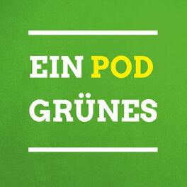 Episode cover of Grüne Politik für Pankow: