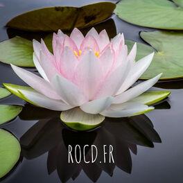 Show cover of ROCD.FR - Toc du couple / ROCD