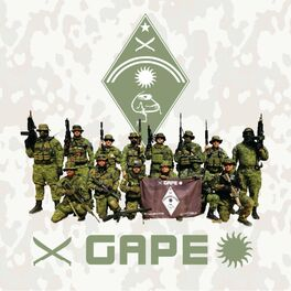 Show cover of GAPE Airsoft Podcast