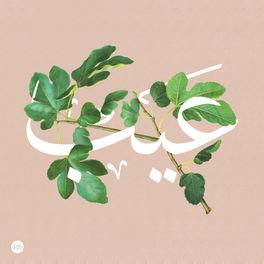 Show cover of Eib   عيب