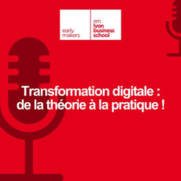 Show cover of Transformation digitale : de la théorie à la pratique !