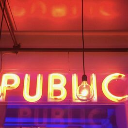 Show cover of Public Pride