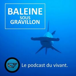 Show cover of Baleine sous Gravillon (BSG)