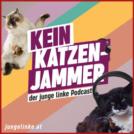 Show cover of Kein Katzenjammer