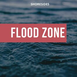 Show cover of Flood Zone